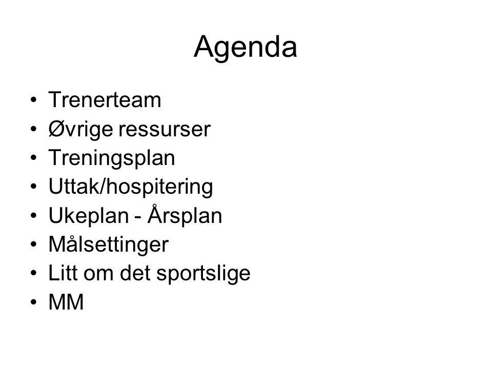 Agenda Trenerteam Øvrige ressurser Treningsplan Uttak/hospitering Ukeplan - Årsplan Målsettinger Litt om det sportslige MM