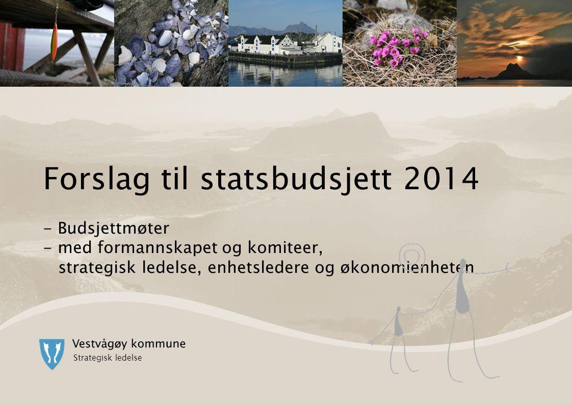 Forslag til statsbudsjett 2014 - Budsjettmøter - med formannskapet og komiteer, strategisk ledelse, enhetsledere og økonomienheten Strategisk ledelse