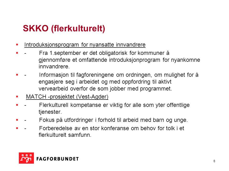 9 SKKO - Større saker som det jobbes kontinuerlig med:  Kultur generelt:  a) en egen lov innen kulturområdet.