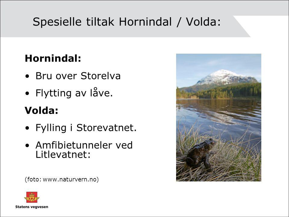 Spesielle tiltak Hornindal / Volda: Hornindal: Bru over Storelva Flytting av låve.