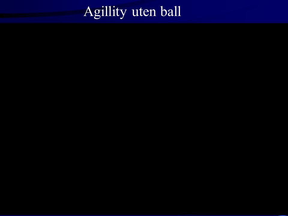 Agillity uten ball