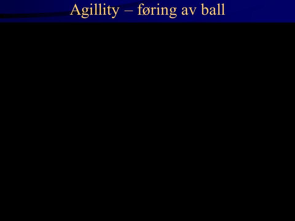 Agillity – føring av ball