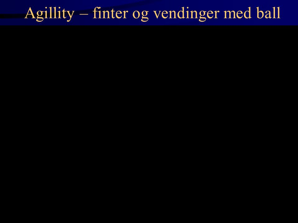 Agillity – finter og vendinger med ball