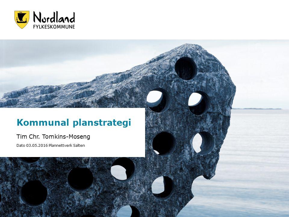 Foto: Bjørn Erik Olsen Kommunal planstrategi Tim Chr.