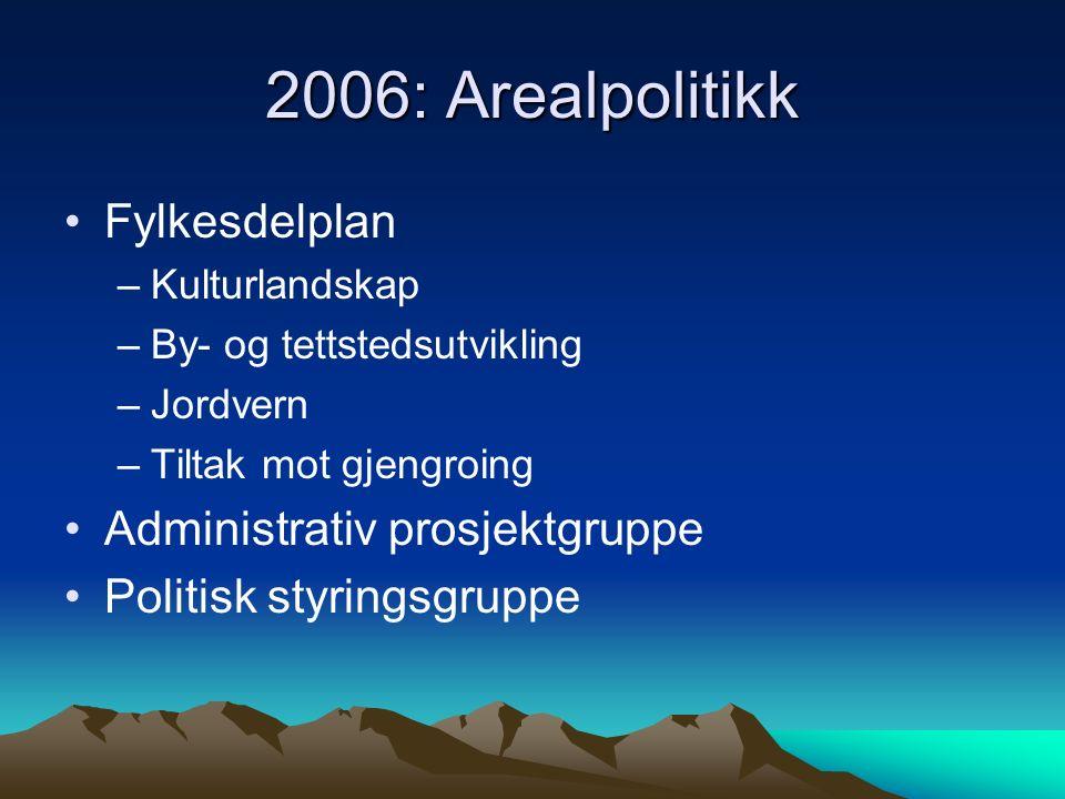 2006: Arealpolitikk Fylkesdelplan –Kulturlandskap –By- og tettstedsutvikling –Jordvern –Tiltak mot gjengroing Administrativ prosjektgruppe Politisk styringsgruppe