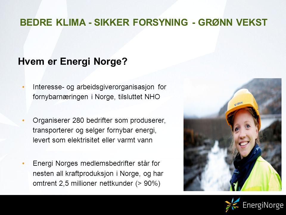 Hvem er Energi Norge.