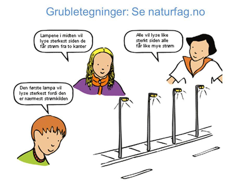 Grubletegninger: Se naturfag.no