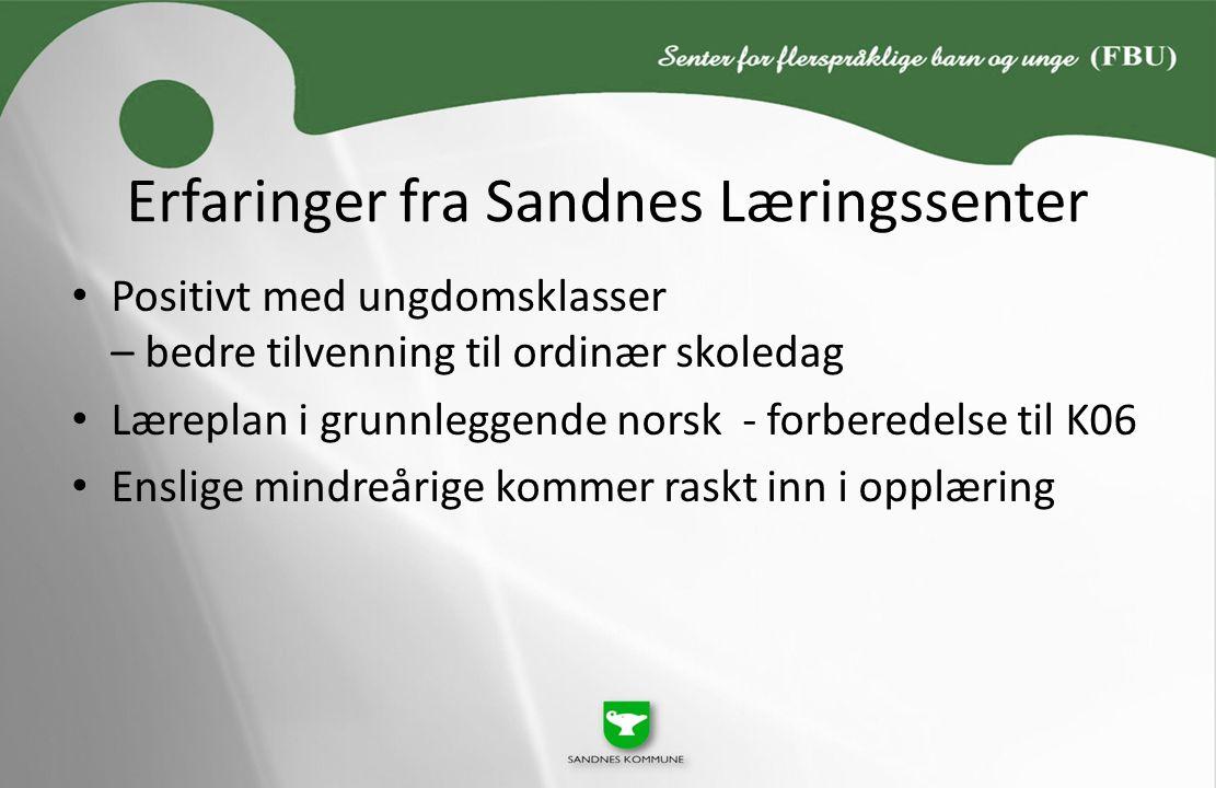Erfaringer fra Sandnes Læringssenter Positivt med ungdomsklasser – bedre tilvenning til ordinær skoledag Læreplan i grunnleggende norsk - forberedelse til K06 Enslige mindreårige kommer raskt inn i opplæring