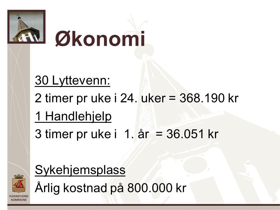 Økonomi 30 Lyttevenn: 2 timer pr uke i 24.uker = 368.190 kr 1 Handlehjelp 3 timer pr uke i 1.