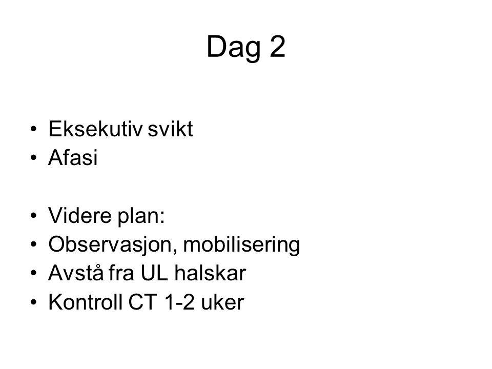 Dag 2 Eksekutiv svikt Afasi Videre plan: Observasjon, mobilisering Avstå fra UL halskar Kontroll CT 1-2 uker
