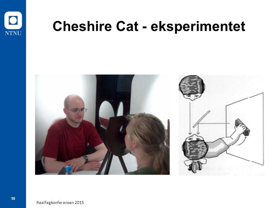 Realfagkonferansen 2015 10 Cheshire Cat - eksperimentet