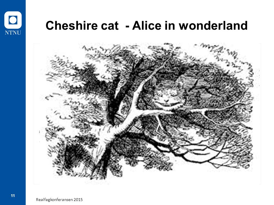 Realfagkonferansen 2015 11 Cheshire cat - Alice in wonderland