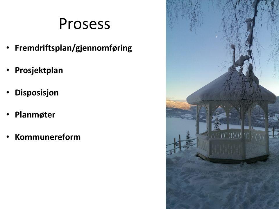 Prosess Fremdriftsplan/gjennomføring Prosjektplan Disposisjon Planmøter Kommunereform