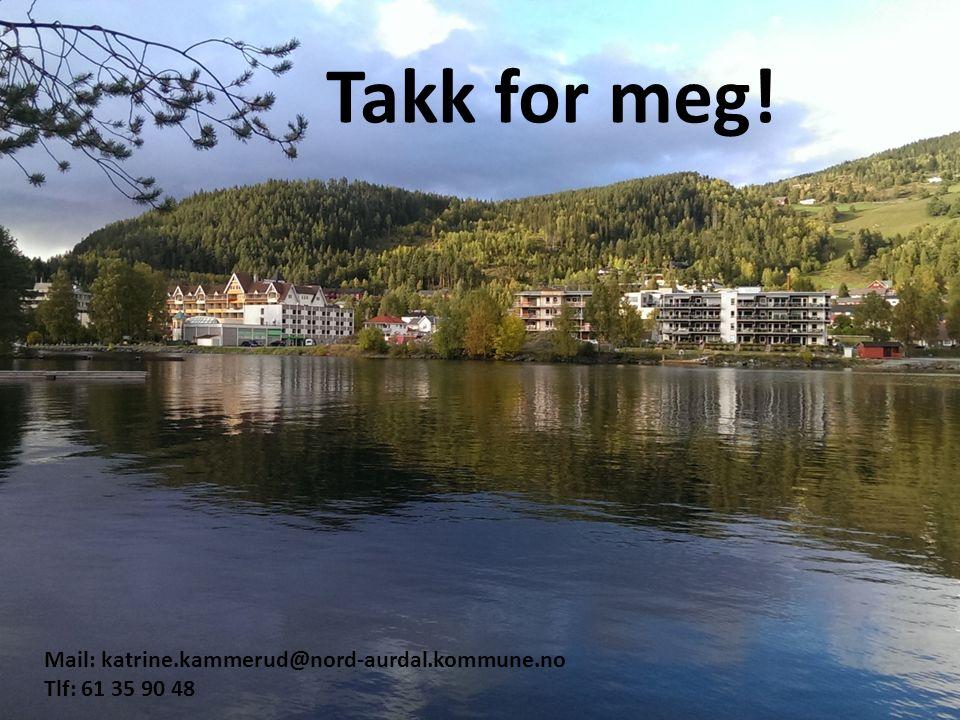 Takk for meg! Mail: katrine.kammerud@nord-aurdal.kommune.no Tlf: 61 35 90 48
