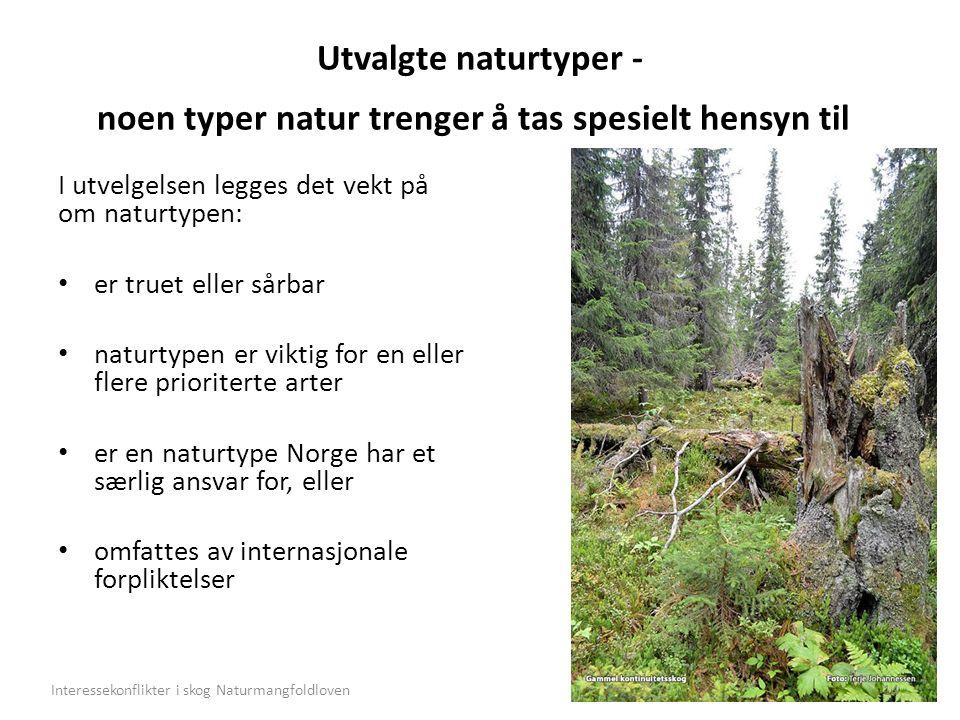 Utvalgte naturtyper - noen typer natur trenger å tas spesielt hensyn til I utvelgelsen legges det vekt på om naturtypen: er truet eller sårbar naturtypen er viktig for en eller flere prioriterte arter er en naturtype Norge har et særlig ansvar for, eller omfattes av internasjonale forpliktelser 14Interessekonflikter i skog Naturmangfoldloven