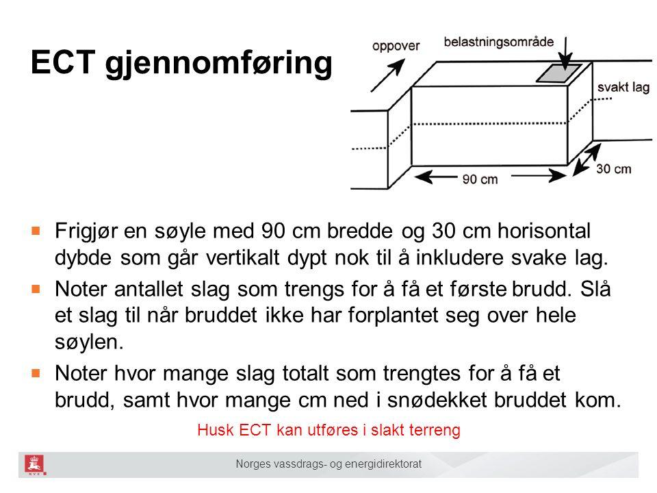 Norges vassdrags- og energidirektorat ECT gjennomføring ■ Frigjør en søyle med 90 cm bredde og 30 cm horisontal dybde som går vertikalt dypt nok til å inkludere svake lag.