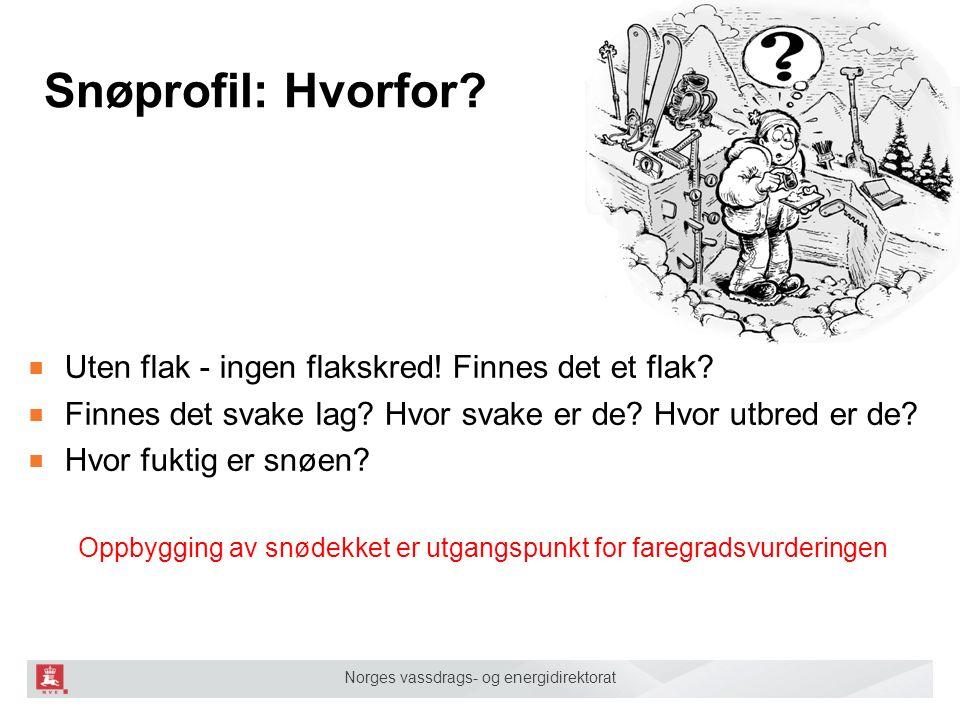 Norges vassdrags- og energidirektorat Snøprofil: Hvorfor.