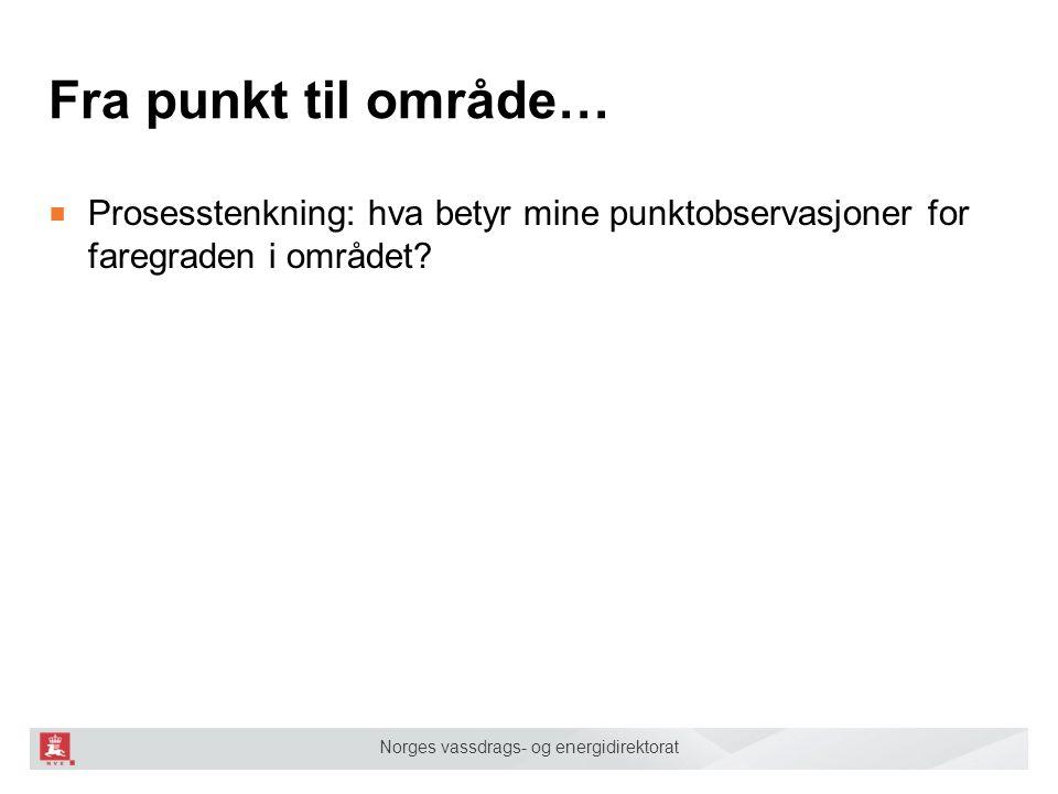 Norges vassdrags- og energidirektorat Fra punkt til område… ■ Prosesstenkning: hva betyr mine punktobservasjoner for faregraden i området
