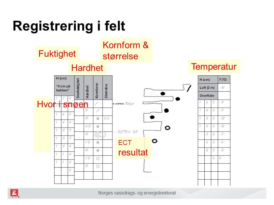 Norges vassdrags- og energidirektorat Registrering i felt Temperatur Hardhet Kornform & størrelse Hvor i snøen ECT resultat Fuktighet