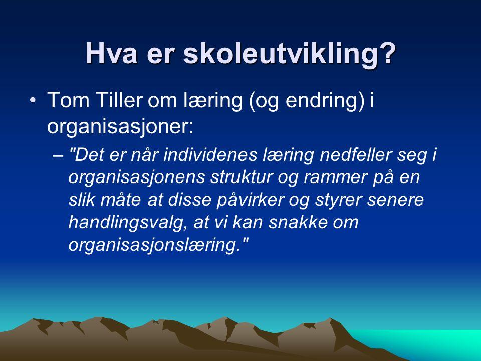 Tom Tiller om læring (og endring) i organisasjoner: –