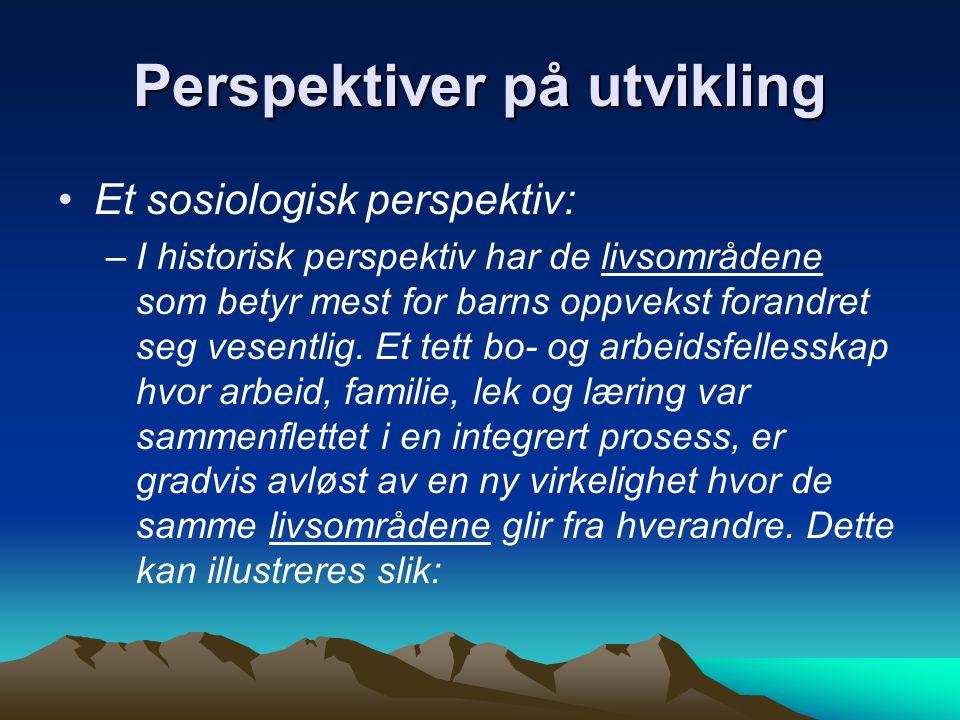 Et sosiologisk perspektiv
