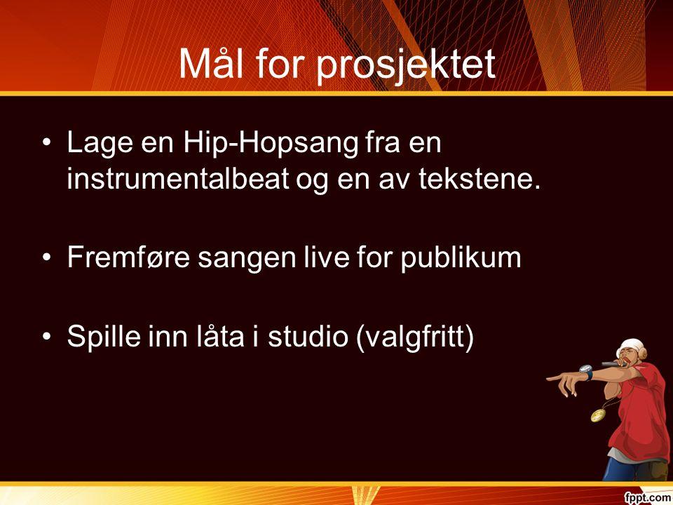 Mål for prosjektet Lage en Hip-Hopsang fra en instrumentalbeat og en av tekstene. Fremføre sangen live for publikum Spille inn låta i studio (valgfrit