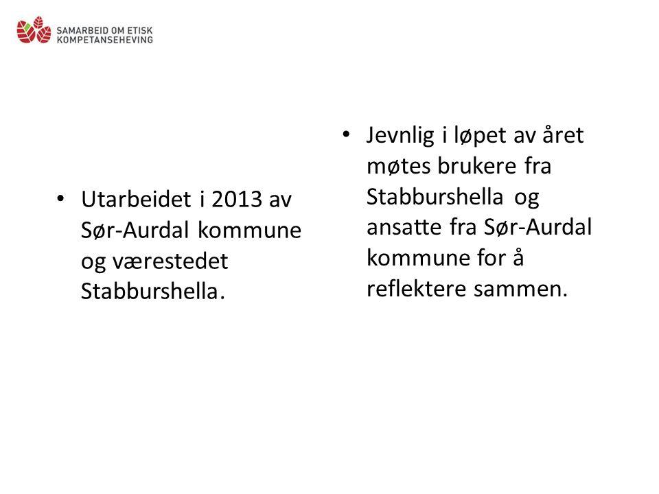 Utarbeidet i 2013 av Sør-Aurdal kommune og værestedet Stabburshella.