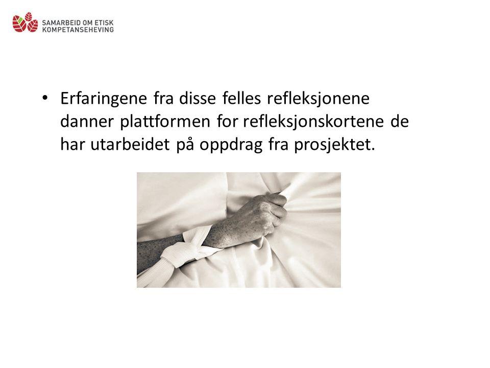 Erfaringene fra disse felles refleksjonene danner plattformen for refleksjonskortene de har utarbeidet på oppdrag fra prosjektet.
