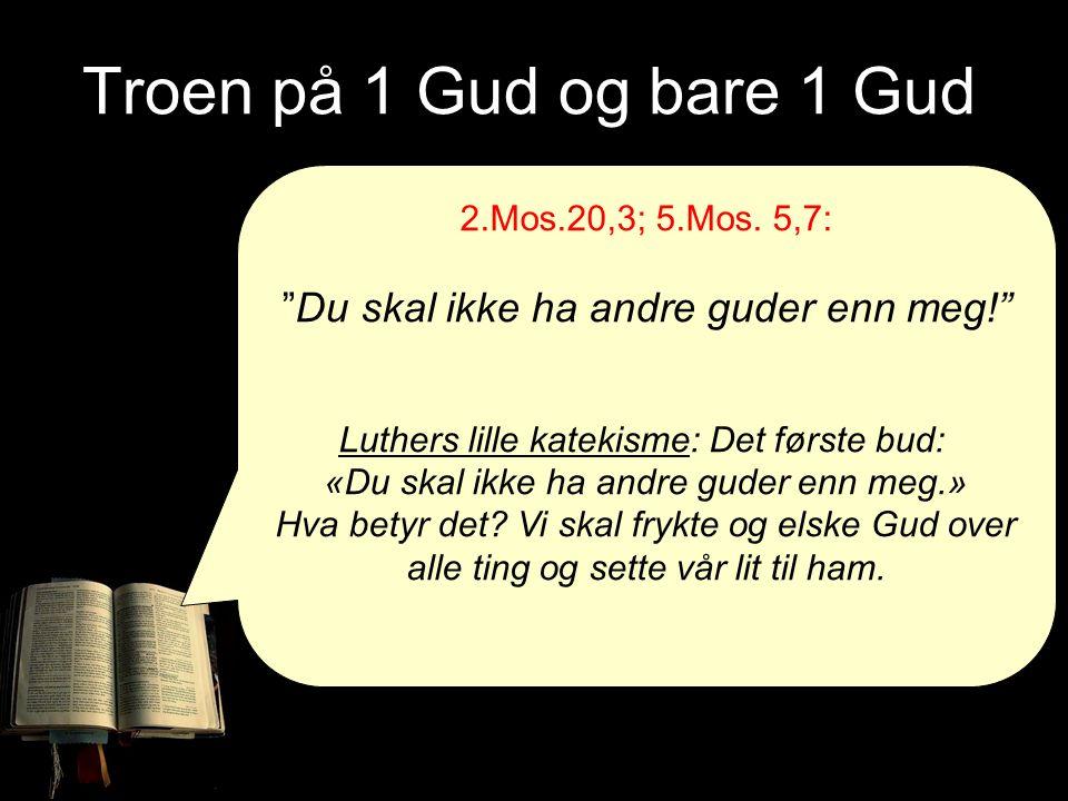 """Troen på 1 Gud og bare 1 Gud 2.Mos.20,3; 5.Mos. 5,7: """"Du skal ikke ha andre guder enn meg!"""" Luthers lille katekisme: Det første bud: «Du skal ikke ha"""