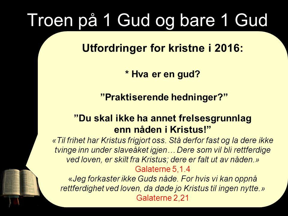 """Troen på 1 Gud og bare 1 Gud Utfordringer for kristne i 2016: * Hva er en gud? """"Praktiserende hedninger?"""" """"Du skal ikke ha annet frelsesgrunnlag enn n"""