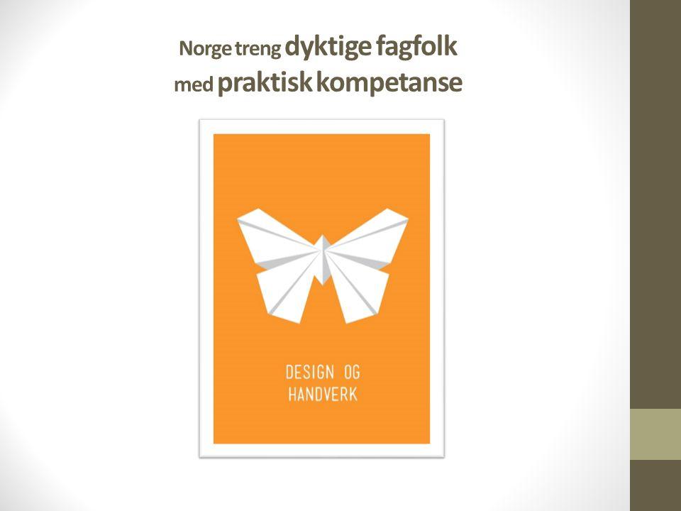 Norge treng dyktige fagfolk med praktisk kompetanse