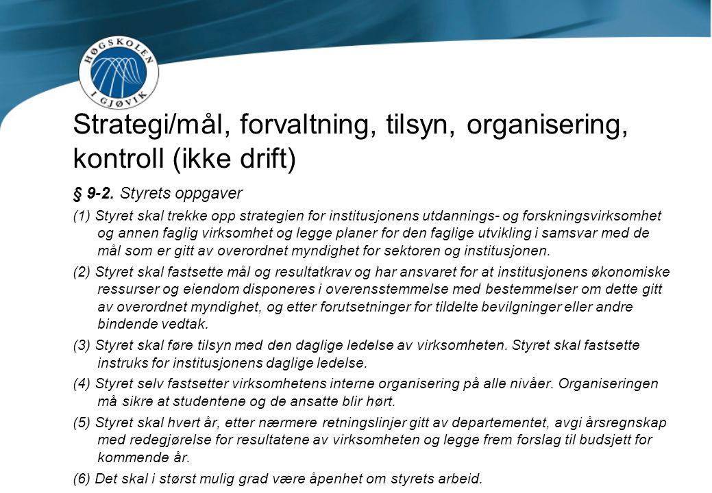 Strategi/mål, forvaltning, tilsyn, organisering, kontroll (ikke drift) § 9-2.