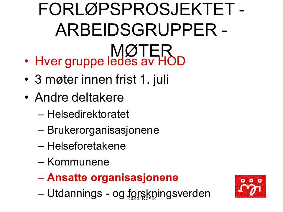 Randi Røvik FORLØPSPROSJEKTET - ARBEIDSGRUPPER - MØTER Hver gruppe ledes av HOD 3 møter innen frist 1.