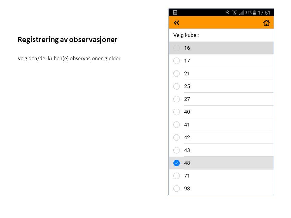 Registrering av observasjoner Velg den/de kuben(e) observasjonen gjelder