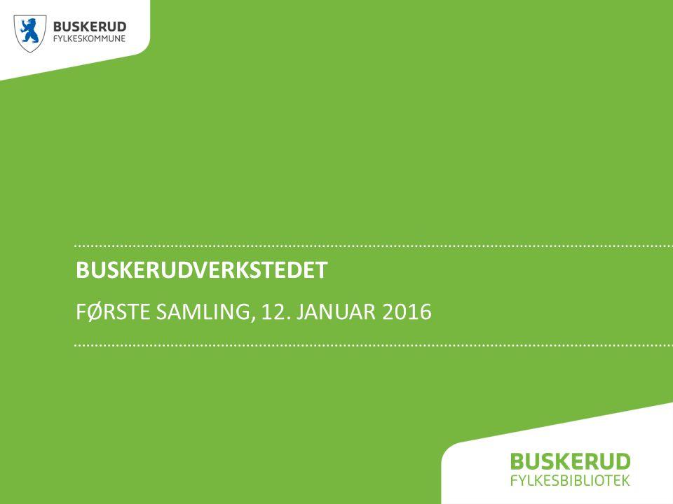 BUSKERUDVERKSTEDET FØRSTE SAMLING, 12. JANUAR 2016