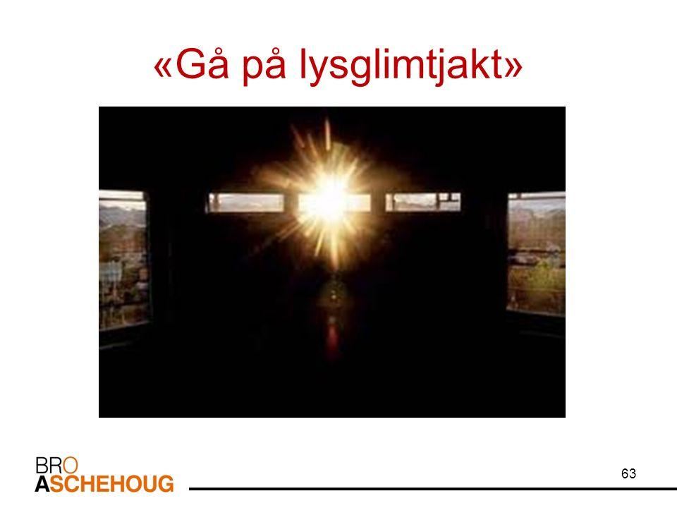 «Gå på lysglimtjakt» 63