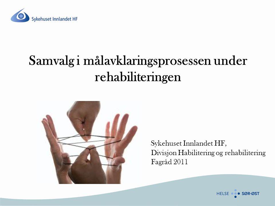 Samvalg i målavklaringsprosessen under rehabiliteringen Sykehuset Innlandet HF, Divisjon Habilitering og rehabilitering Fagråd 2011