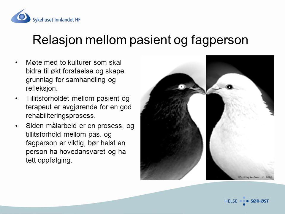 Relasjon mellom pasient og fagperson Møte med to kulturer som skal bidra til økt forståelse og skape grunnlag for samhandling og refleksjon.