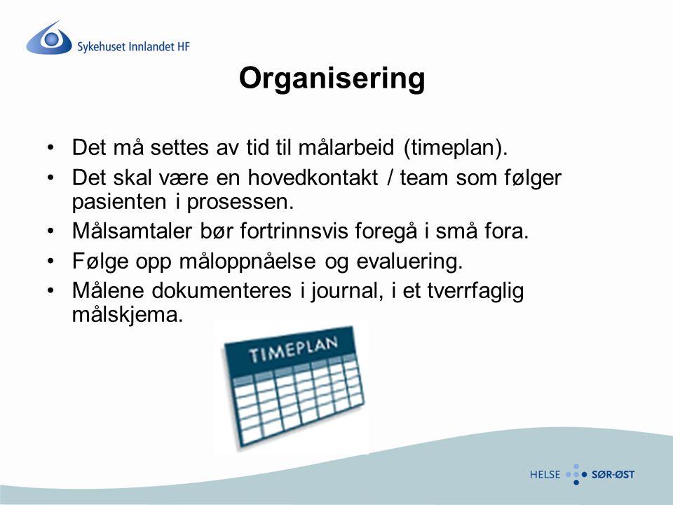 Organisering Det må settes av tid til målarbeid (timeplan).