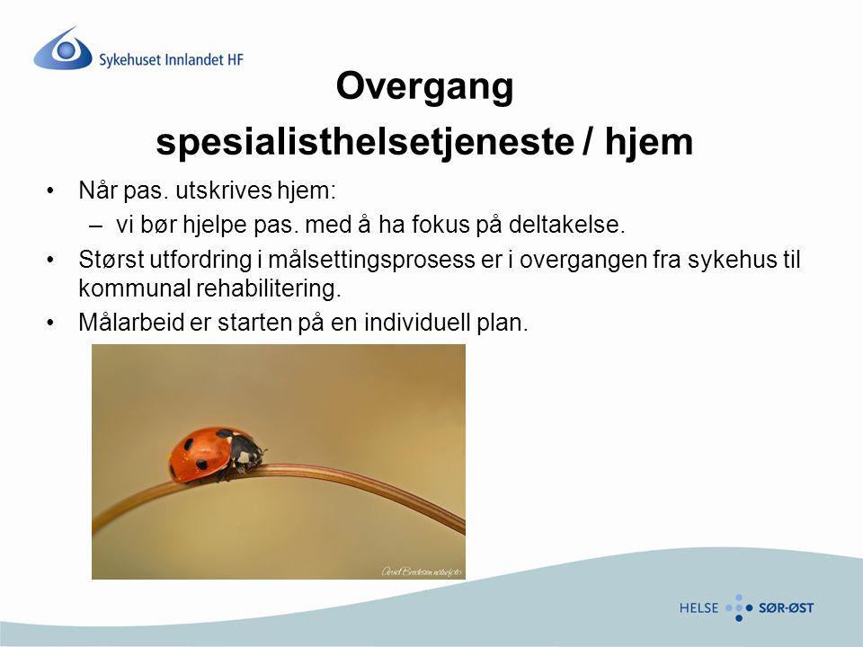 Overgang spesialisthelsetjeneste / hjem Når pas. utskrives hjem: –vi bør hjelpe pas.