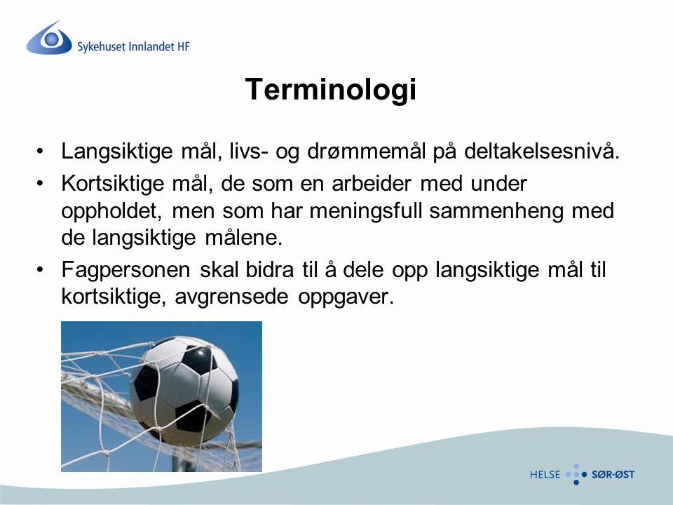 Terminologi Langsiktige mål, livs- og drømmemål på deltakelsesnivå.