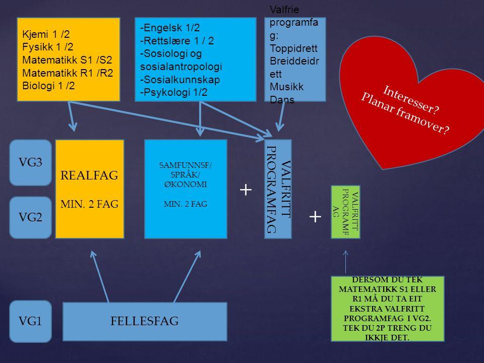 Fyrstegongsvitnemål - poeng Snittkaraktèr * 10 + Realfagspoeng + Realfagspoeng 0,5p pr fag (1p Fy2, R2) + evnt språkpoeng = Skulepoeng Andre krav:  Spesifikke karaktèrkrav (lærar; 3 i norsk og 4 i matematikk + 35 skulepoeng, politi; 3 i norsk) 4 i matematikk + 35 skulepoeng, politi; 3 i norsk)  Fagkrav ( td.