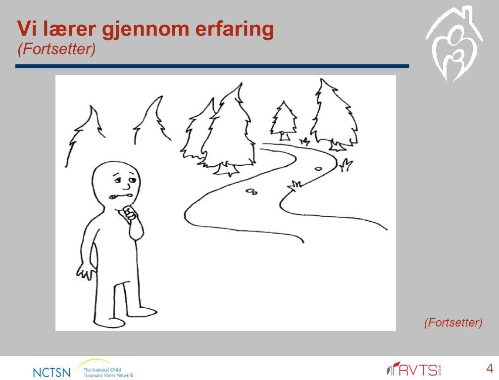 Vi lærer gjennom erfaring (Fortsetter) 4 (Fortsetter)