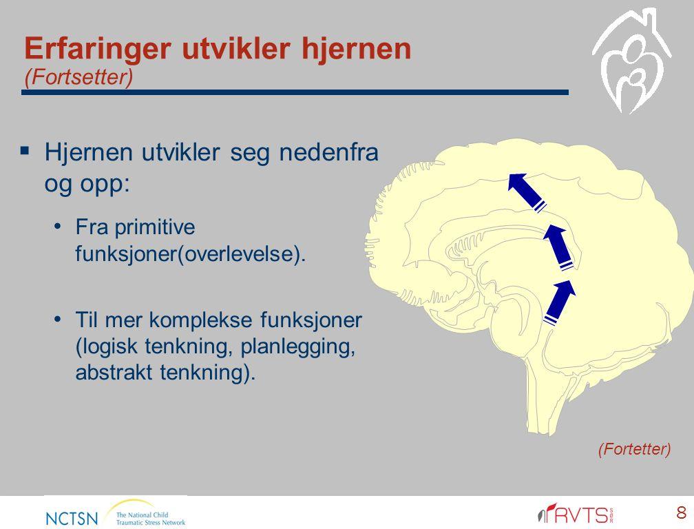 Erfaringer utvikler hjernen (Fortsetter)  Hjernen utvikler seg nedenfra og opp: Fra primitive funksjoner(overlevelse). Til mer komplekse funksjoner (