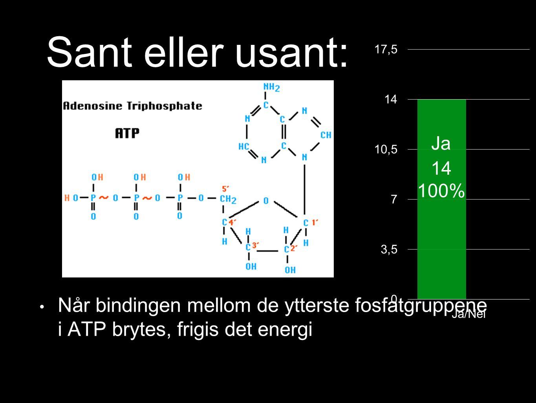 Bildet viser et ATP-molekyl der en binding er markert med en pil.