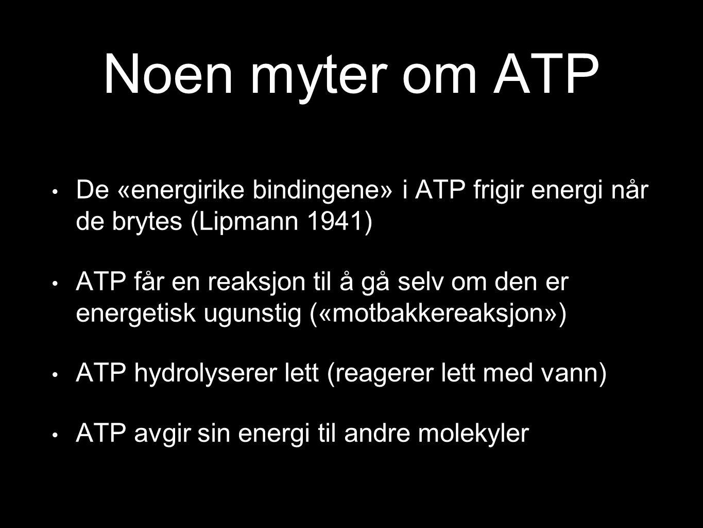Noen myter om ATP De «energirike bindingene» i ATP frigir energi når de brytes (Lipmann 1941) ATP får en reaksjon til å gå selv om den er energetisk u