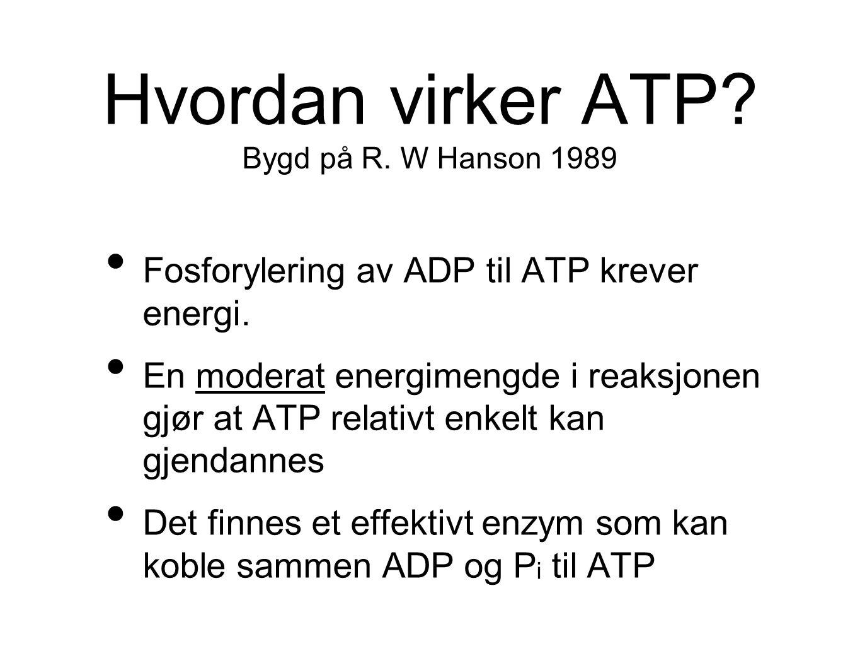 Hvordan virker ATP? Fosforylering av ADP til ATP krever energi. En moderat energimengde i reaksjonen gjør at ATP relativt enkelt kan gjendannes Det fi