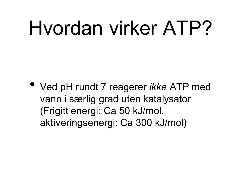Hvordan virker ATP? Ved pH rundt 7 reagerer ikke ATP med vann i særlig grad uten katalysator (Frigitt energi: Ca 50 kJ/mol, aktiveringsenergi: Ca 300