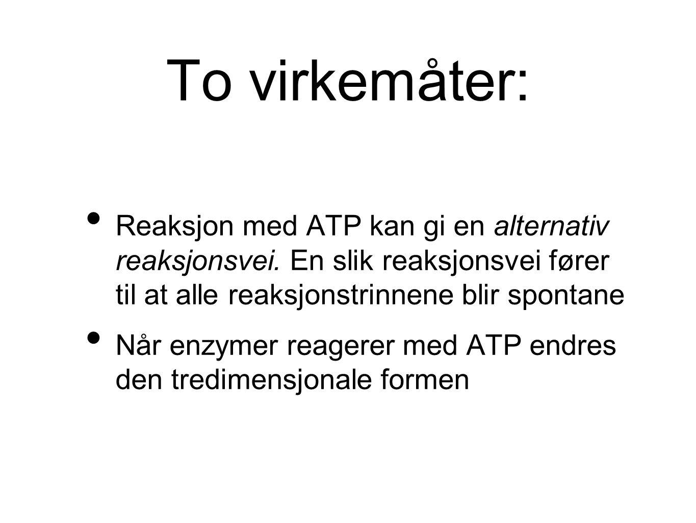 To virkemåter: Reaksjon med ATP kan gi en alternativ reaksjonsvei. En slik reaksjonsvei fører til at alle reaksjonstrinnene blir spontane Når enzymer