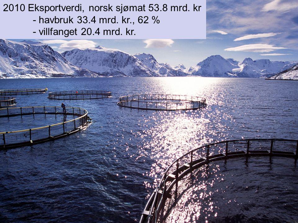 2010 Eksportverdi, norsk sjømat 53.8 mrd. kr - havbruk 33.4 mrd. kr., 62 % - villfanget 20.4 mrd. kr.
